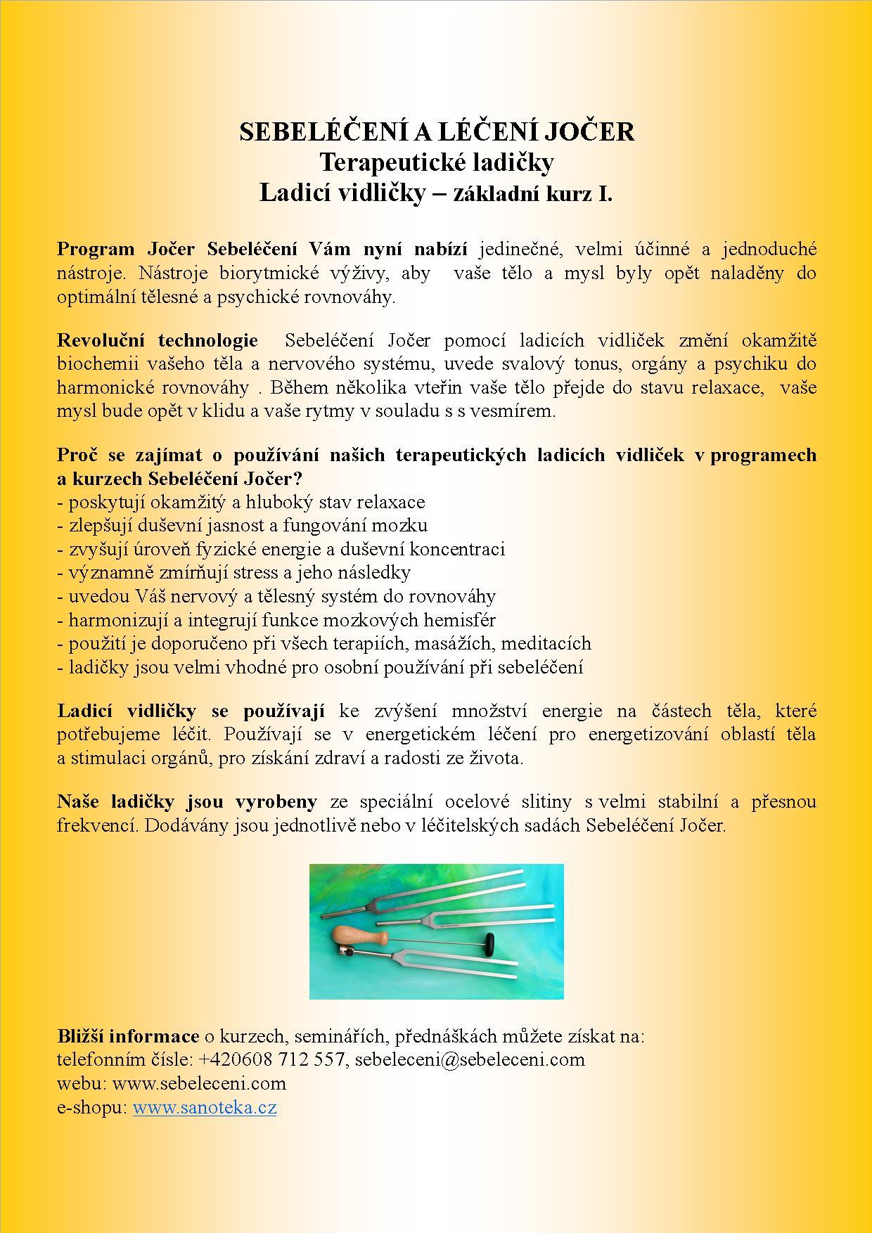 Ladicky_kurz2